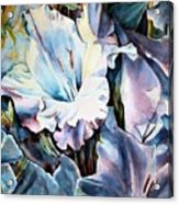 Glads White  Acrylic Print by June Conte  Pryor