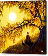 Golden Afternoon Meditation Acrylic Print by Laura Iverson