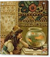 Goldfish Acrylic Print by William Stephen Coleman