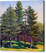 Gp 10-12 Acrylic Print by Stan Hamilton