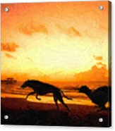 Greyhounds On Beach Acrylic Print by Michael Tompsett