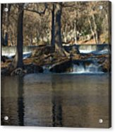 Guadalupe Overflows Acrylic Print by Karen Musick