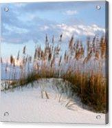 Gulf Dunes Acrylic Print by Eric Foltz