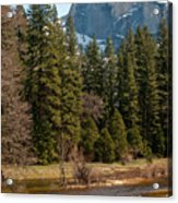Half Dome Yosemite Acrylic Print by Tom Dowd