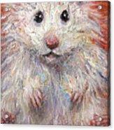 Hamster Painting  Acrylic Print by Svetlana Novikova
