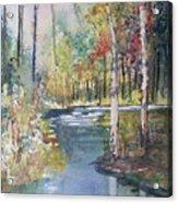 Hartman Creek Birches Acrylic Print by Ryan Radke