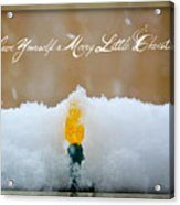 Have Yourself A Merry Little Christmas Acrylic Print by Lisa Knechtel