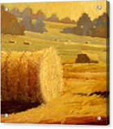 Hay Bales Of Bordeaux Acrylic Print by Robert Lewis