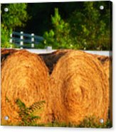 Hay Bales Acrylic Print by Todd A Blanchard