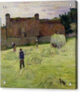 Haymaking In Brittany Acrylic Print by Paul Gauguin