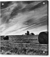 Hayrolls And Field Acrylic Print by Steven Ainsworth