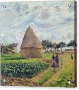 Haystacks Acrylic Print by Camille Pissarro