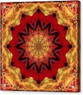 Healing Mandala 28 Acrylic Print by Bell And Todd