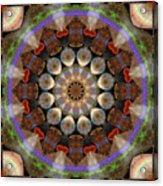 Healing Mandala 30 Acrylic Print by Bell And Todd