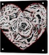 Heartline 1 Acrylic Print by Will Borden