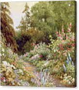 Herbaceous Border  Acrylic Print by Evelyn L Engleheart