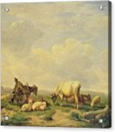 Herdsman And Herd Acrylic Print by Eugene Joseph Verboeckhoven