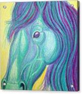 Horse Profile Acrylic Print by Nick Gustafson
