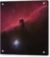 Horsehad Nebula II Acrylic Print by Charles Warren