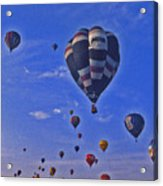 Hot Air Balloon - 14 Acrylic Print by Randy Muir