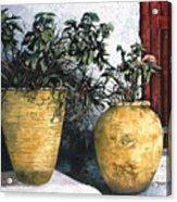 I Vasi Acrylic Print by Guido Borelli
