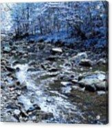 Ice Blue Forest Acrylic Print by Svetlana Sewell