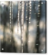 Icicle Art Fun 13 Acrylic Print by Debra     Vatalaro