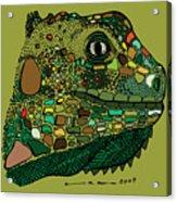 Iguana - Color Acrylic Print by Karl Addison