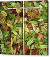 In The Fall Acrylic Print by Deborah Montana