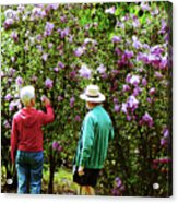 In The Lilac Garden Acrylic Print by Susan Savad