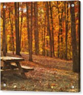 In The Park Acrylic Print by Kathy Jennings