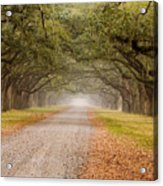 Inviting Acrylic Print by Eggers   Photography