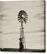 Iowa Windmill In A Corn Field Acrylic Print by Wilma  Birdwell