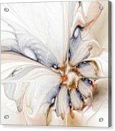 Iris Acrylic Print by Amanda Moore