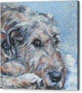 Irish Wolfhound Resting Acrylic Print by Lee Ann Shepard