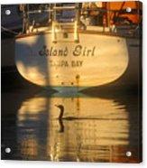 Island Girl Acrylic Print by David Lee Thompson