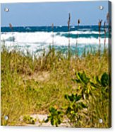 Its A Shore Bet Acrylic Print by Michelle Wiarda