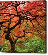 Japenese Garden, Portland Acrylic Print by Jesse Estes
