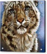Jewel Acrylic Print by Barbara Keith