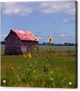 Kansas Landscape Acrylic Print by Steve Karol