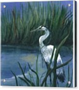 Keeper Of The Pond II Acrylic Print by Shirley Lawing