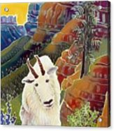 King Of The High Peaks Acrylic Print by Harriet Peck Taylor