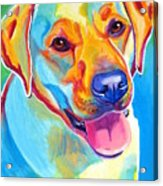 Lab - May Acrylic Print by Alicia VanNoy Call