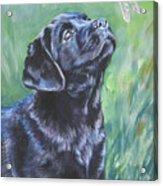 Labrador Retriever Pup And Dragonfly Acrylic Print by Lee Ann Shepard