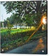 Last Cut Acrylic Print by William  Brody