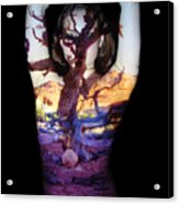 Lauren Acrylic Print by Arla Patch