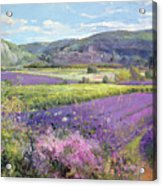 Lavender Fields In Old Provence Acrylic Print by Timothy Easton