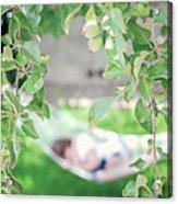 Lazy Days Of Summer Acrylic Print by Lisa Knechtel