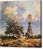Lea County Memories Acrylic Print by Wanda Dansereau