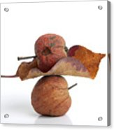Leaf And Apples Acrylic Print by Bernard Jaubert